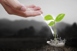 SE'nSE 2020 : appel à projet ouvert aux créateurs de start-ups soutenables