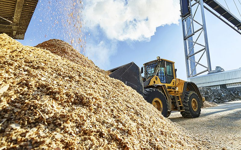 17e Rencontres de la Biomasse : «La production de biomasse dans une Europe en transition»