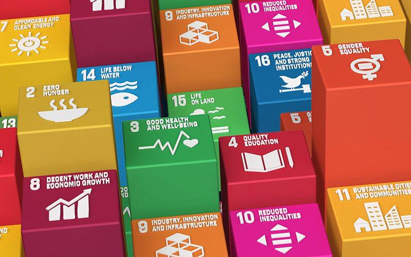 Vers des organisations durables : appel à candidats