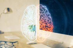 Participez à une première mondiale sur le fonctionnement du cerveau entrepreneurial…