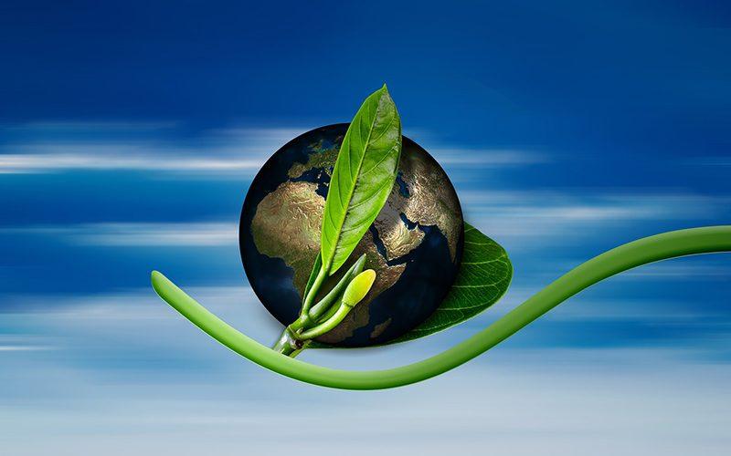 La Gestion Environnementale en 360°, pour l'intégrer dans la stratégie et l'opérationnel de son entreprise
