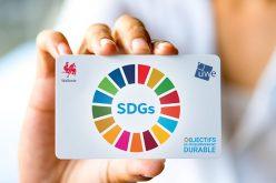 17 SDGs pour les entreprises wallonnes, c'est 17 raisons d'essayer, de se lancer et de prendre confiance !