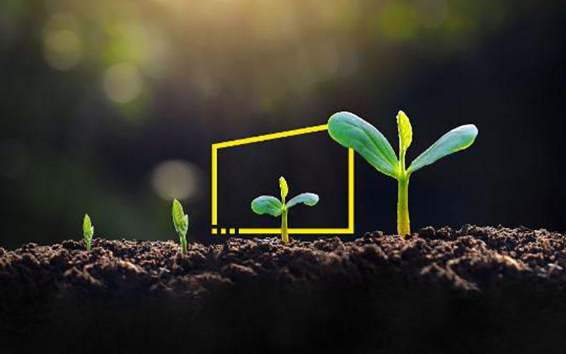EY aura un bilan carbone négatif en 2021 et un bilan net zéro en 2025